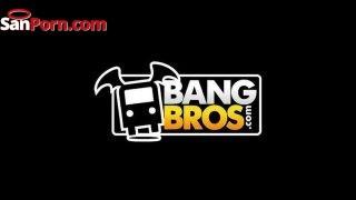 Bang Bros Logo Min