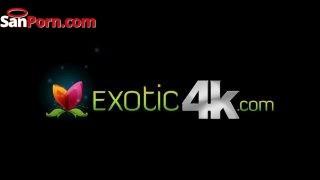 Exotic4k Logo Min